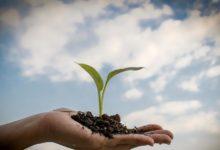 Photo of Vad gör du för din egen tillväxt?